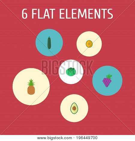 Flat Icons Ananas, Cluster, Alligator Pear And Other Vector Elements