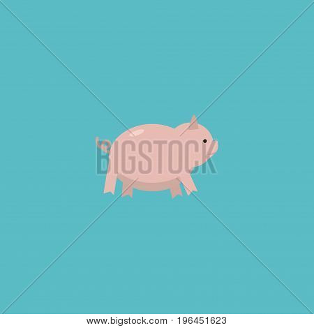 Flat Icon Pig Element. Vector Illustration Of Flat Icon Swine Isolated On Clean Background