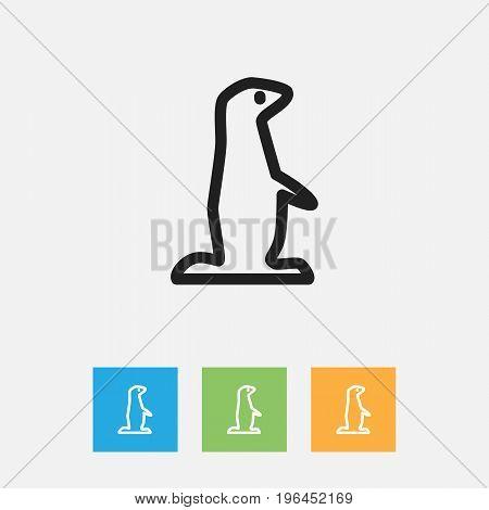 Vector Illustration Of Animal Symbol On Groundhog Outline