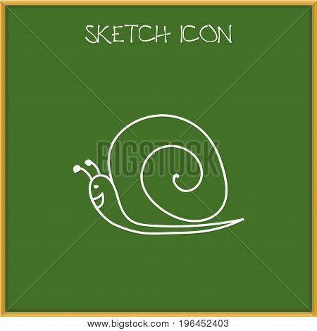 Vector Illustration Of Zoo Symbol On Snail Doodle