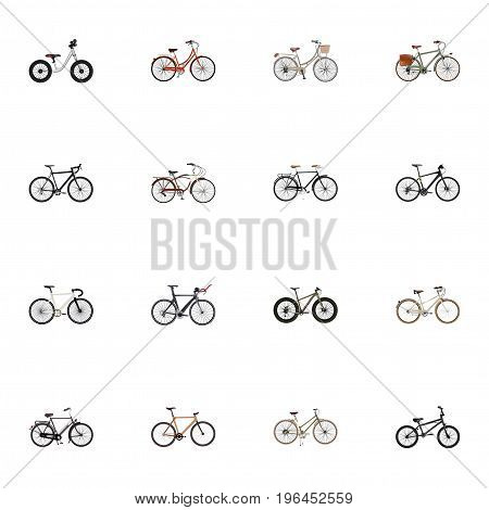 Realistic Road Velocity, Competition Bicycle, For Girl And Other Vector Elements