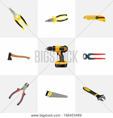 Realistic Tongs, Hatchet, Forceps And Other Vector Elements