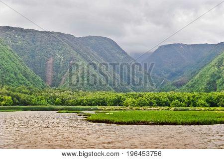 Mounts and jungle in foggy weather. Big island. Hawaii. USA