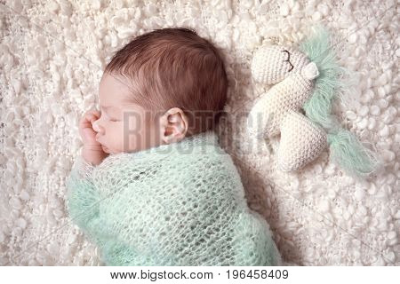 Sleeping newborn baby boy with funny toy horse on soft plaid at home