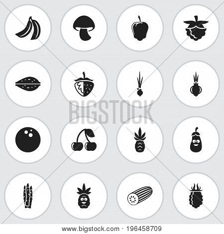 Set Of 16 Editable Food Icons. Includes Symbols Such As Garlic, Eggplant, Mushroom And More