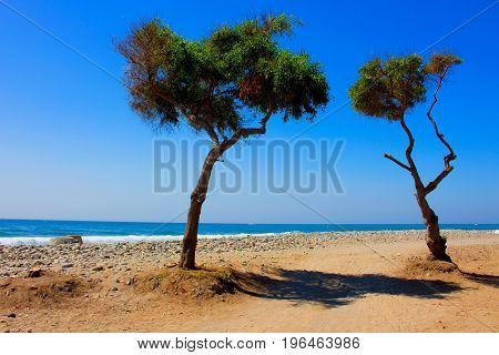 Beach. Summer beach view. Puerto Banus, Marbella city, Andalusia, Spain.