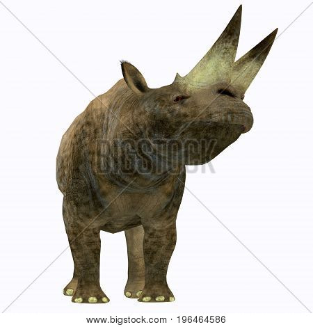 Arsinoitherium Mammal on White 3d illustration - Arsinoitherium was a herbivorous rhinoceros-like mammal that lived in Africa in the Early Oligocene Period.