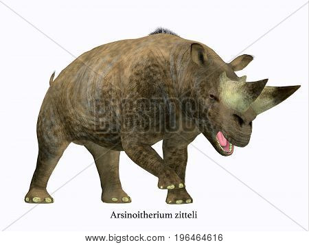 Arsinoitherium Mammal Side Profile with Font 3d illustration - Arsinoitherium was a herbivorous rhinoceros-like mammal that lived in Africa in the Early Oligocene Period.