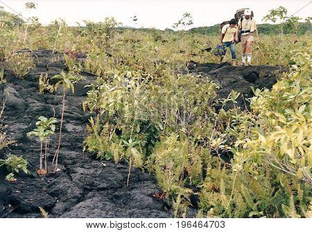 SAVAI'I / SAMOA - CIRCA 1990: Two American tourists with backpacks explore a lava field.
