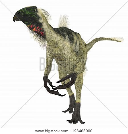 Beipiaosaurus Dinosaur on White 3d illustration - Beipiaosaurus was a herbivorous theropod dinosaur that lived in China in the Cretaceous Period.