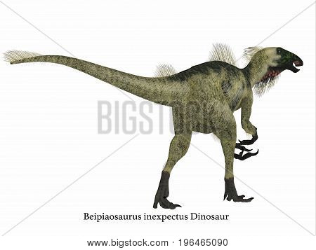 Beipiaosaurus Dinosaur Tail with Font 3d illustration - Beipiaosaurus was a herbivorous theropod dinosaur that lived in China in the Cretaceous Period.