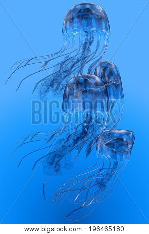 Blue Spotted Jellyfish Movement 3d illustration - Several Blue Spotted jellyfish swim together in a group bloom in clear ocean waters.