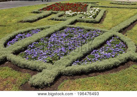 Beautiful flowerbed in the park in Yerevan,Armenia.