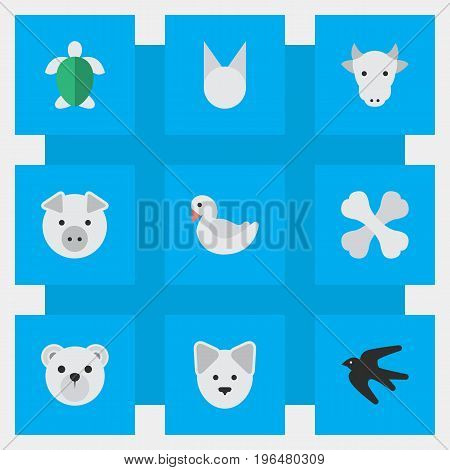 Elements Wolf, Turtle, Skeleton And Other Synonyms Tomcat, Swine And Dog. Vector Illustration Set Of Simple Animals Icons.