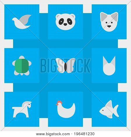 Elements Pigeon, Wolf, Moth And Other Synonyms Perch, Tortoise And Butterfly. Vector Illustration Set Of Simple Animals Icons.