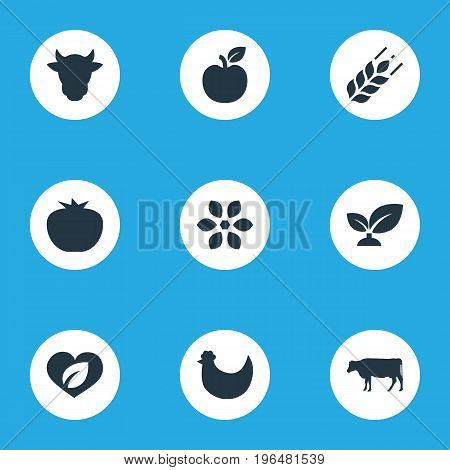 Vector Illustration Set Of Simple  Icons. Elements Dairy, Vegetables, Blossom And Other Synonyms Bloom, Apple And Vegetarian.