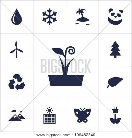 Set Of 13 Natural Icons Set. Collection Of Solar Panel, Foliage, Conservation And Other Elements.