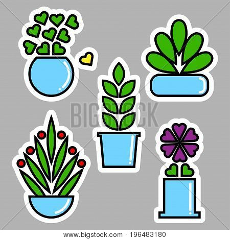 Set of house plants in pots. Vector illustration for sticker, label or price tag