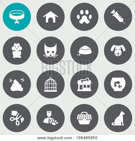 Set Of 16 Mammal Icons Set. Collection Of Pile, Cat, Fishbowl And Other Elements.
