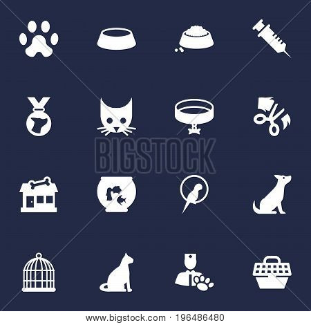 Set Of 16 Mammal Icons Set. Collection Of Cat, Sitting, Bird And Other Elements.