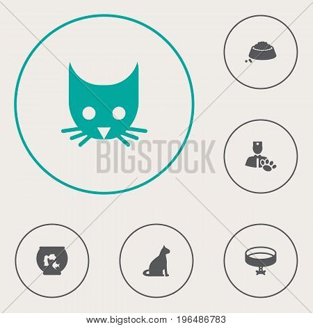 Collection Of Cat, Food, Sitting And Other Elements. Set Of 6 Animals Icons Set.