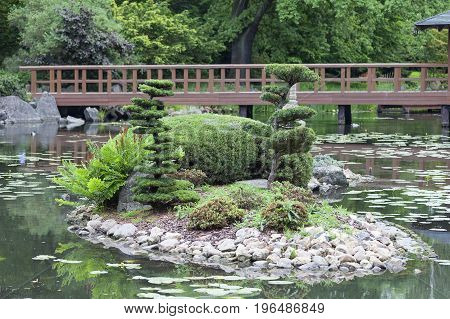 WROCLAW POLAND - JUNE 13 2017: Japanese Garden exotic plants Wroclaw Poland. The Japanese Garden was founded in 1909-1913