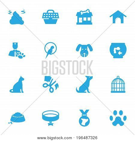 Set Of 16 Pets Icons Set. Collection Of Home , Veterinarian, Neckband Elements.