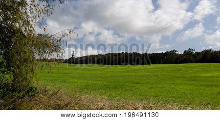 Ranch Near Windmills Farm  At Upolu Point, Big Island