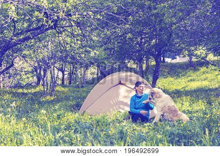 Funny Woman Traveler Plays With Big Dog Next To Tent