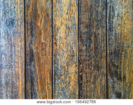 texture of old bark wood use as natural background