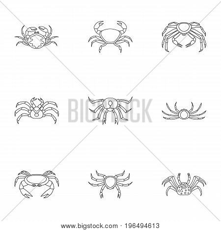 Types of crab icons set. Outline set of 9 types of crab vector icons for web isolated on white background