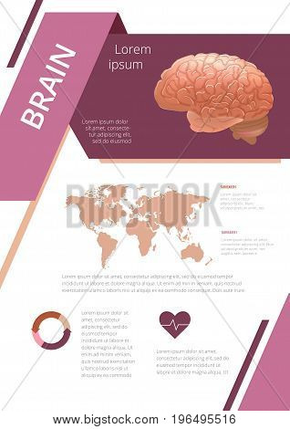 Internal human organs infographic. Medicine poster. brain Medical brochure template. Vector illustration
