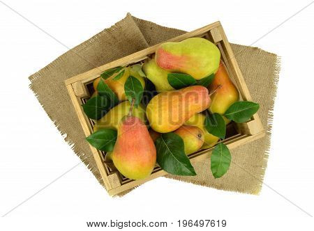 Fragrant fresh pears in a wooden box. Delivery. Harvest. Top view. Delicious fruit with a rustic setting. Isolated without a shadow.
