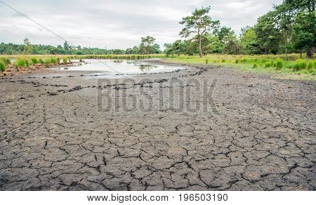 Dried soil of a fen in a Dutch nature reserve at the border with Belgium after a long dry period.