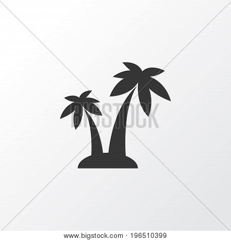 Premium Quality Isolated Trees Element In Trendy Style. Palms Icon Symbol.