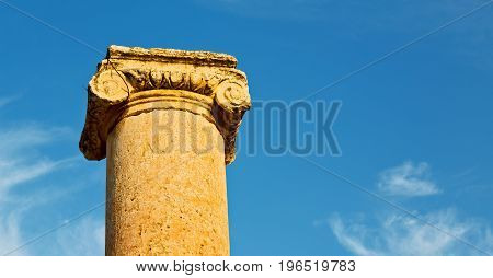 The Antique Column And Archeological Site Classical Heritage