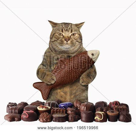 The cat sweet tooth is holding a big chocolate fish. White background.