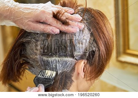 Brush dying female hair. Beautician is working with hair. Basic laws of hair color.