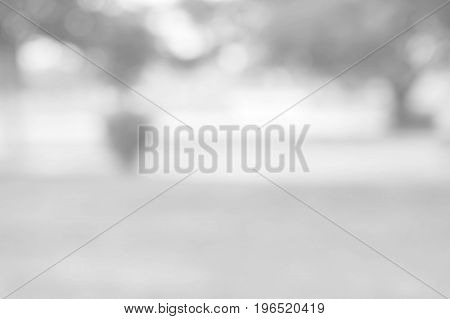White blurred abstract background / grey abstract background. soft backdrop of nature abstract background. used for wallpaper or background.