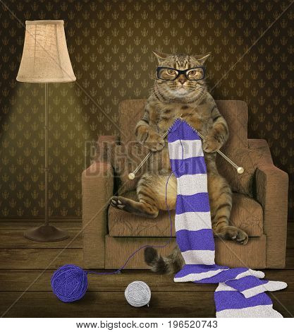 The cat sits in an armchair and knits a striped scarf.