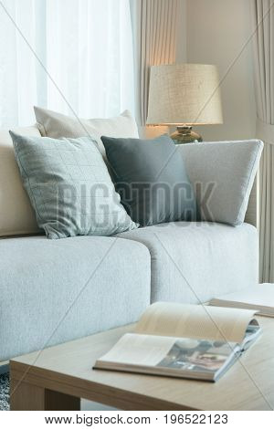 Gray Color Scheme Sofa And Pillows In Modern Style Living Room