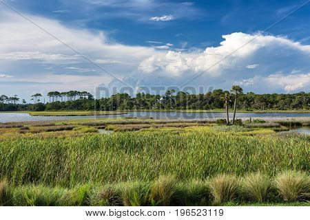 The spectacular Barrier Island of Kiawah showing water inlets marshes forests coupled with a beautiful blue sky and puffy clouds in early evening.