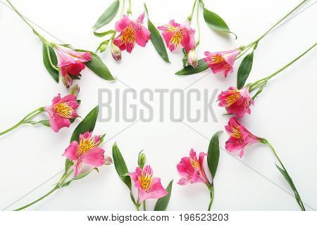 Pink Alstroemeria Flowers Isolated On A White