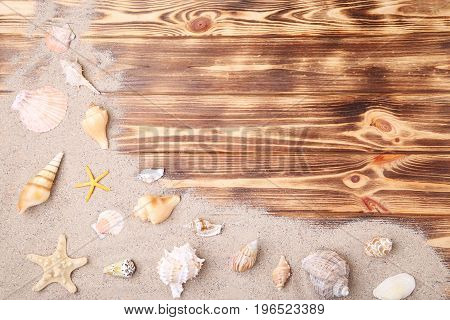 Seashells with beach sand on brown wooden table