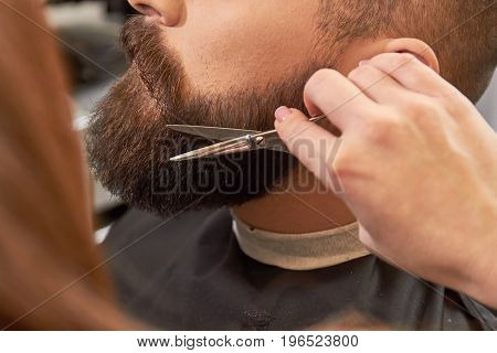 Beard and hand with scissors. Facial hair trimming.