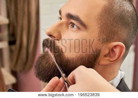 Scissors trimming beard. Face of barber shop client.