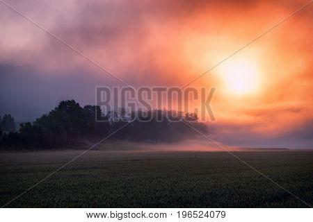 Surreal fiery sunrise at the misty foggy fields.
