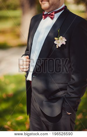 Man The Groom In A Wedding Costume With Butterfly. Hands, Care, To Correct, To Adjust, Fashion. Inst