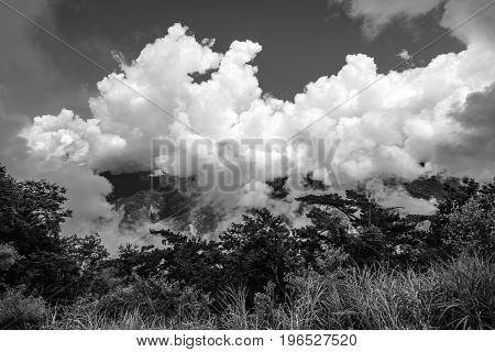 Cloud covered mountaintop in Alishan National Forest in Chiayi District, Taiwan