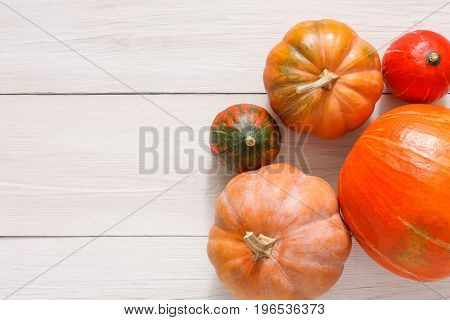 Fall background. Top view, pumpkins and red apples on weathered rustic white wood with copy space.